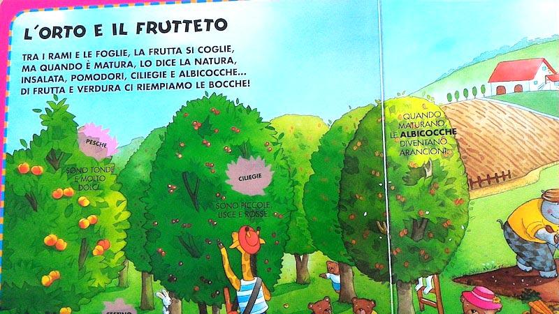 """Amato La Fattoria"""": aiuta il tuo bambino a collocare i magneti colorati  UK86"""
