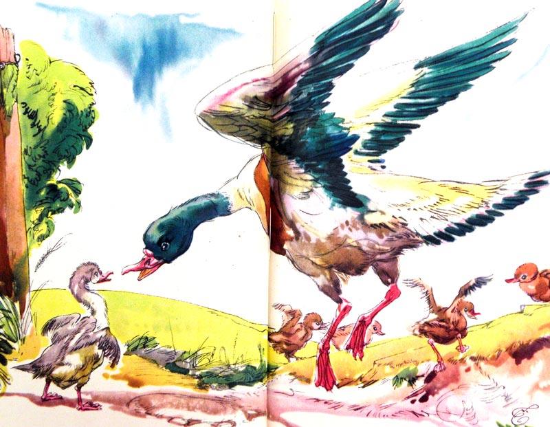 Andersen Hans Christian fiabe scrittore creatori di sogni  libricino-libri-fiabe-favole-per-bambini-ragazzi-news-blog-recensioni (8)