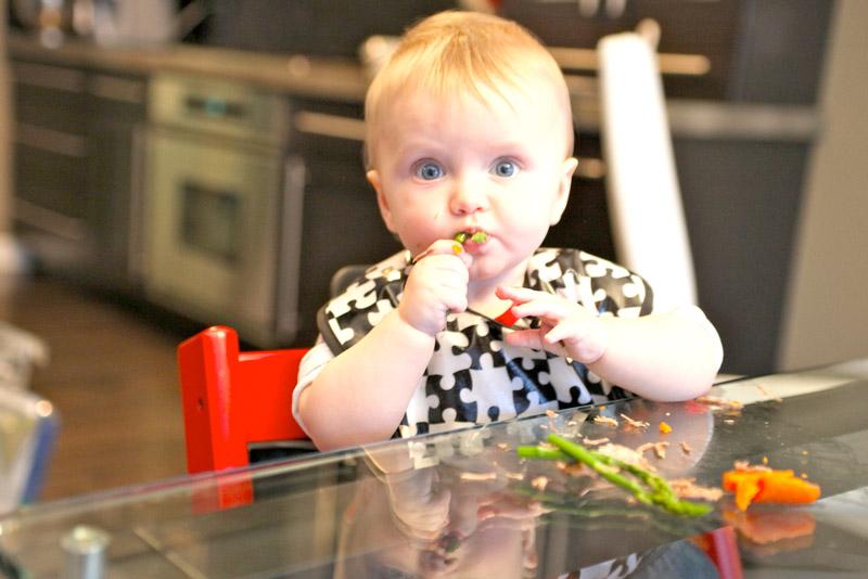 Auto svezzamento consigli pratici e problematiche alimentazione bambino allergie  libricino-libri-fiabe-favole-per-bambini-ragazzi-news-blog-recensioni (1)